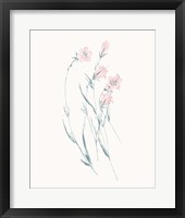 Framed Flowers on White V Contemporary