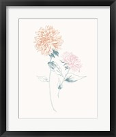 Framed Flowers on White IV Contemporary