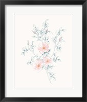 Framed Flowers on White II Contemporary
