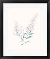Framed Flowers on White I Contemporary