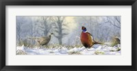 Framed Pheasants