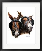 Framed Grandpa's Mules