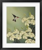 Framed Spring Lilies