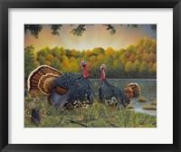 Framed Turkey Season