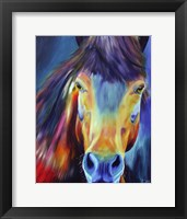 Framed Horse Without Title