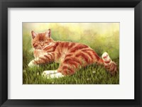 Framed Sammy In Grass