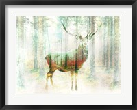Framed Lord of the Woods