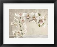 Framed Orchid Vase