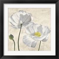 Framed Poppies in White I