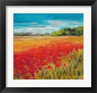 Framed Poppy Field