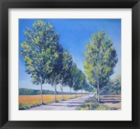 Framed Picardy Poplars IV