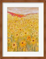 Framed Spanish Sunflowers V