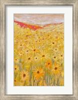 Framed Spanish Sunflowers V