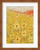 Framed Spanish Sunflowers VI