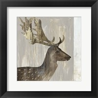 Framed Stag III