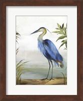 Framed Blue Heron