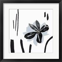 Framed Interflora I