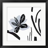 Framed Interflora II