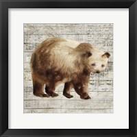 Framed Crossing Bear I