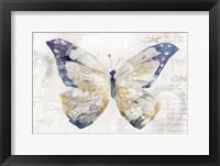 Framed Butterfly Effect I