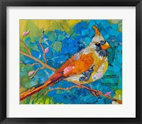 Framed Female Cardinal on Blue
