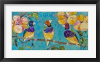 Framed Tropical Finches