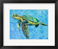 Framed Floating Sea Turtle