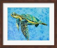 Framed Floating Sea Turtle