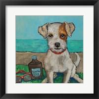 Framed Beach Boy