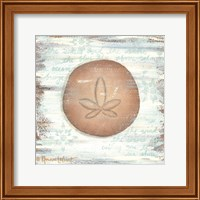 Framed Ocean Sand Dollar
