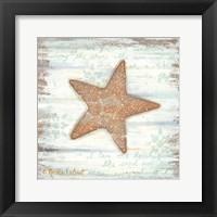 Framed Ocean Starfish