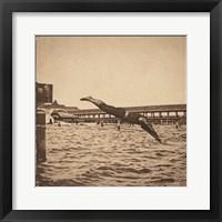 Framed Vintage Perfect Dive Female