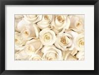 Framed Top View - White Roses