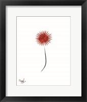 Framed Floral Patriotic 1