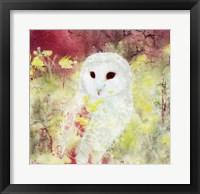 Framed Owl Time