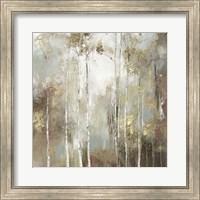 Framed Fine Birch I