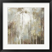 Framed Fine Birch I