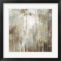 Fine Birch I Framed Print