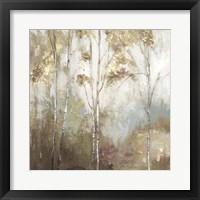 Fine Birch II Framed Print