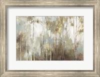 Framed Fine Birch III
