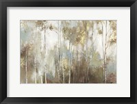 Framed Fine Birch III