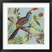 Framed Paradise Toucan I