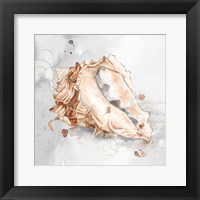 Framed Blush Shell III