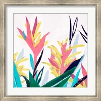 Framed Alpinia II