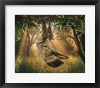 Framed Basking