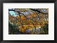 Framed Clove Lakes Park in Autumn A