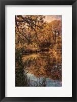 Framed Clove Lakes Park in Autumn C