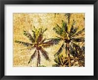 Framed Palms 2
