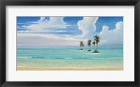 Framed Sea Spray