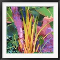 Framed Palm Impressions 3